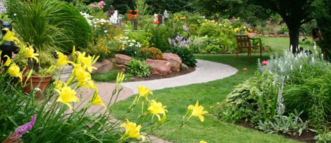 Services-plantings
